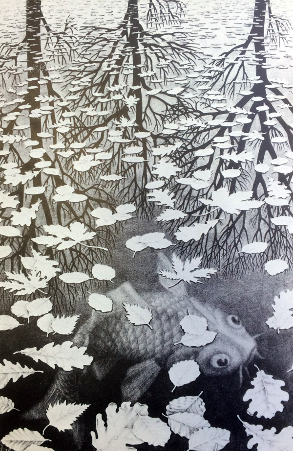 fish-by mcescher