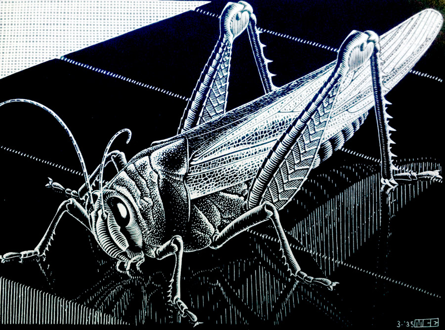 grasshopper-by mcescher