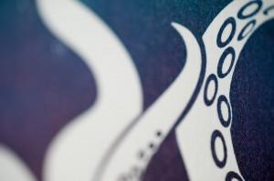 octopus-aqua-closeup2-by-ambigraph