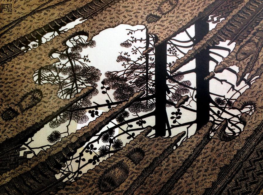 reflection-by mcescher